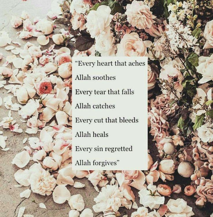 Allah is the Greatest. SubhanAllah
