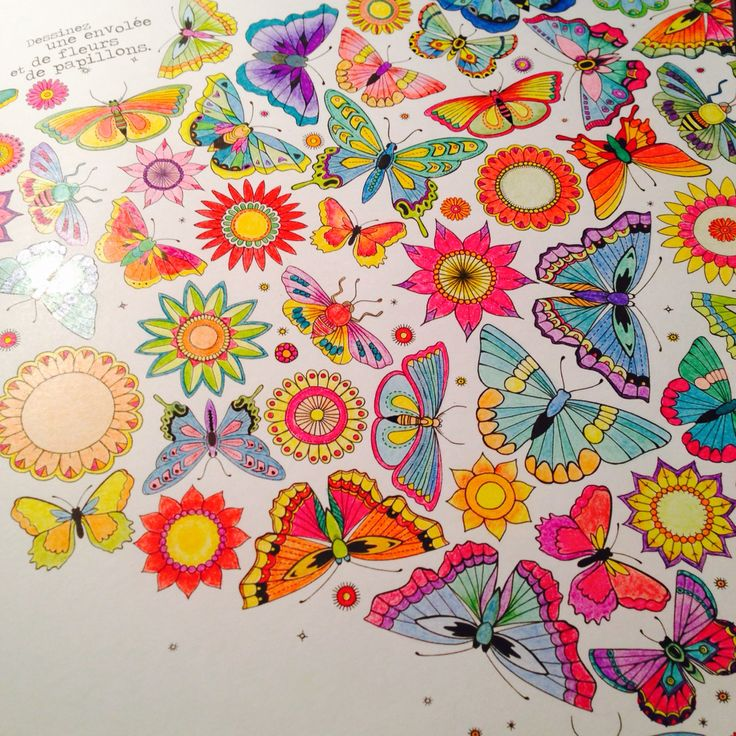 Jardin Secret Coloring BooksArt TherapyButterflyMy ColoringSecret GardensGardenBooks