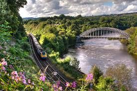 Image result for wylam