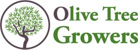 Olive Tree Growers- repotting your olive tree