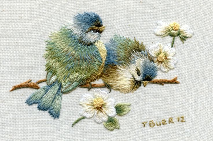 Beautiful birds by Trish Burr