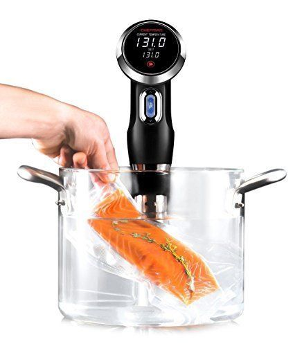 Sous Vide Circulator Precision Thermal Immersion Temp  Timer Control Chef Cooker #SousVide