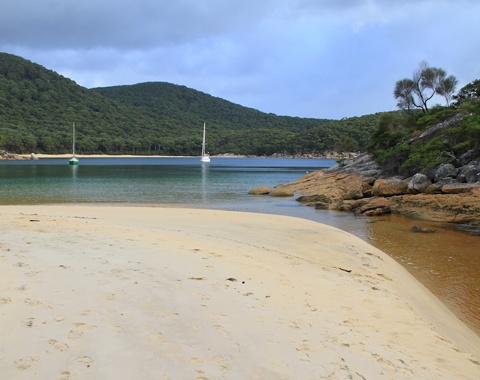 Tannin infused waters of Refuge Cove at Australia's Wilsons Promontory