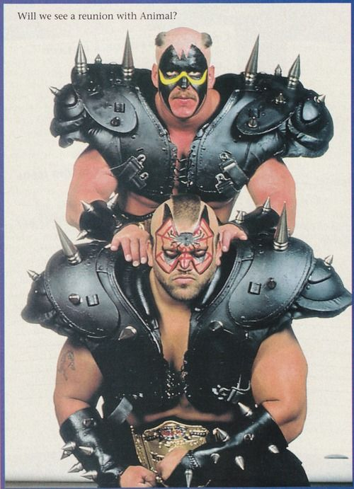 The Road Warriors - Hawk and Animal