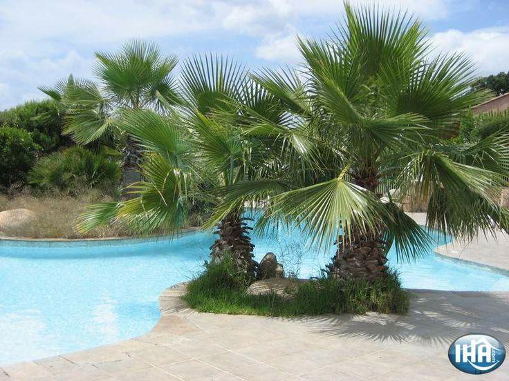 Villa  Sainte Lucie de Porto Vecchio Vakantiewoningen  Zuid Corsica Corsica Frankrijk