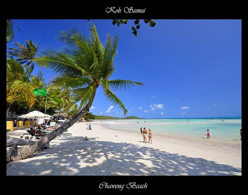99 best images about chaweng beach on pinterest keep for Table 99 koh samui