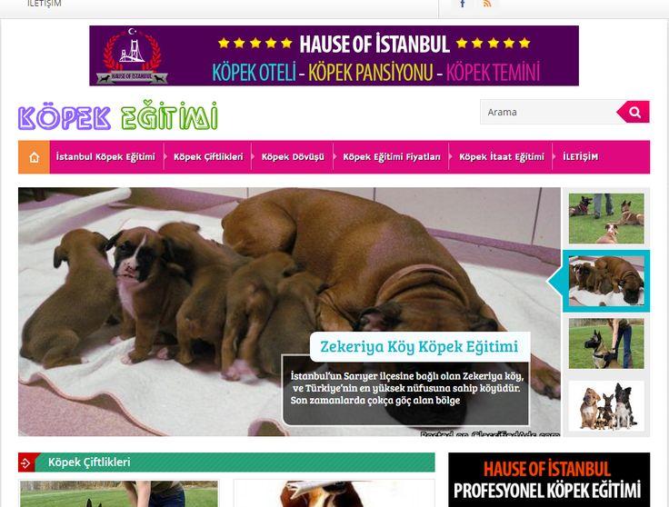 www.kopekegitimii.com - Köpek eğitimi