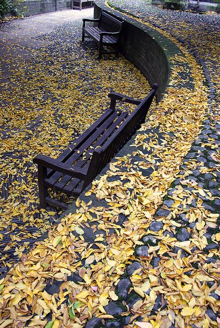 Benches 2 by GillyWalker, London, via Flickr