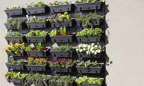 Jardines verticales paso a paso