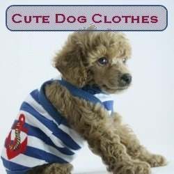 Check out the new cute dog clothes I added to the page - cheap dog clothes on sale!