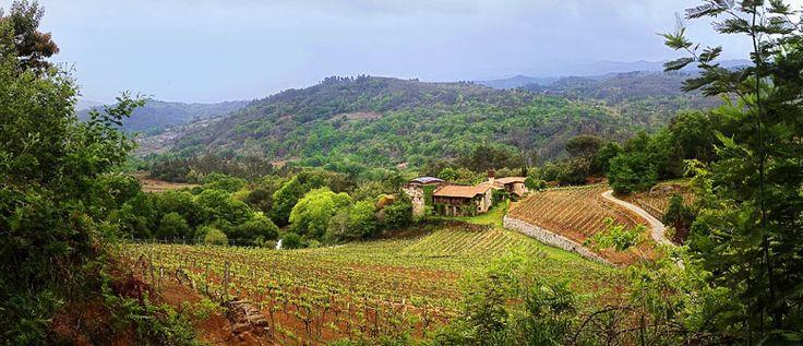 En San Clodio (Galicia) se encuentra una pequeña joya que invita al sosiego, al paseo, al disfrute del paisaje y al deleite de uno de los m...