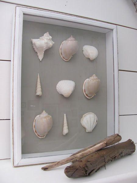 Legende  DIY Bild: Fundstücke aus dem Urlaub, Muscheln ausstellen, z.B. für Rahmen im Hausflur
