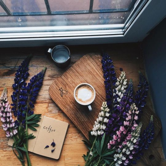 A universal language: seasonal aspects, coffee & of course, yarn crafts.
