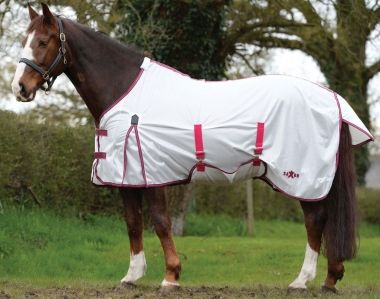 Check out the deal on Saxon SoftMesh Gusset/Belly Wrap Standard  Neck Fly Sheet at Chicks Discount Saddlery