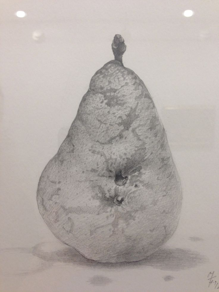 Drawing of a pear