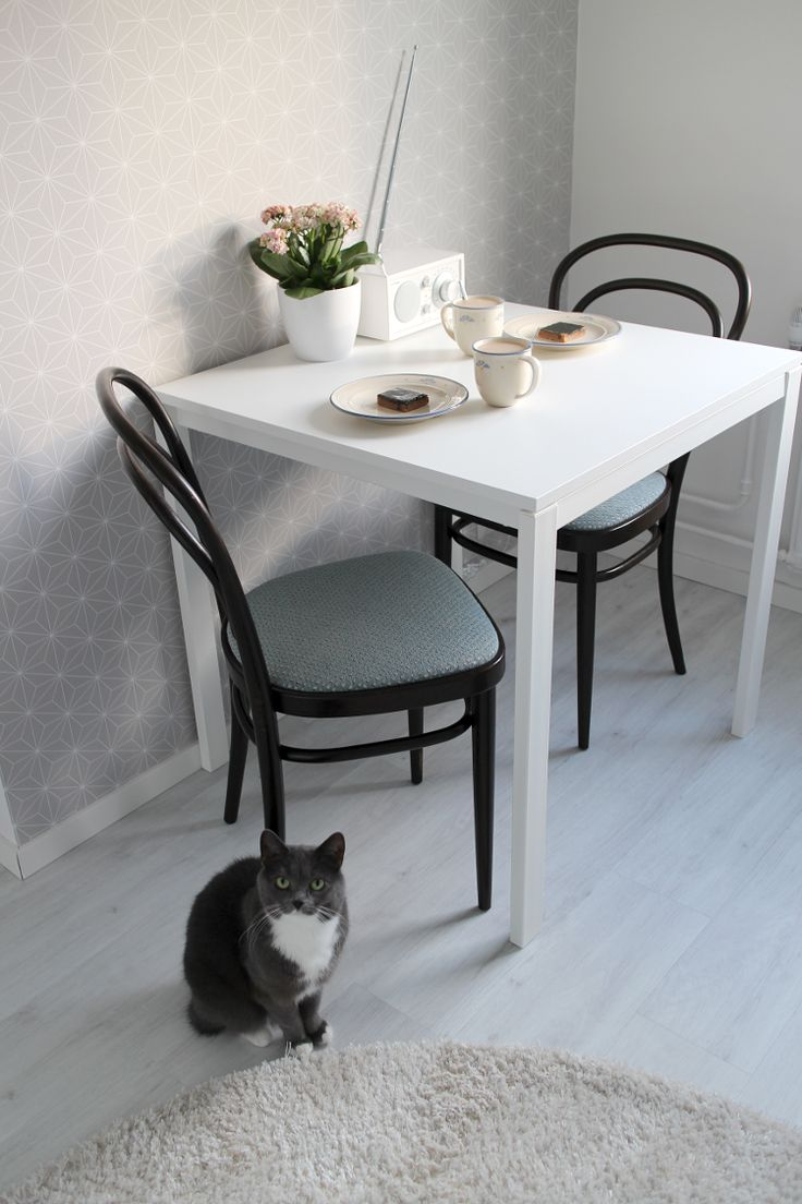 Small dining table and thonet chairs.