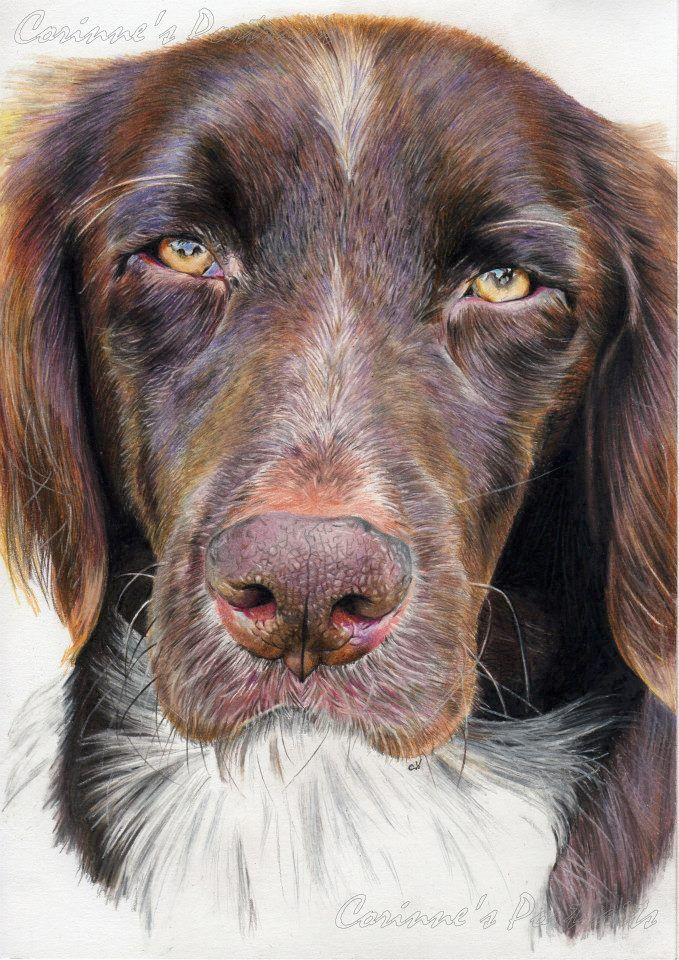"""Pencil Artist Corinne's Portraits (French) 