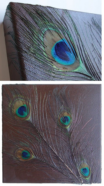 Feathers on Painted Canvas -- cute idea and easy way to decorate a room!