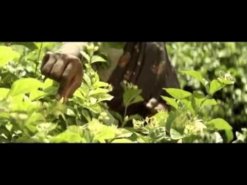 J'ADORE DIOR LE PARFUM THE FILM 60 Version] - YouTube