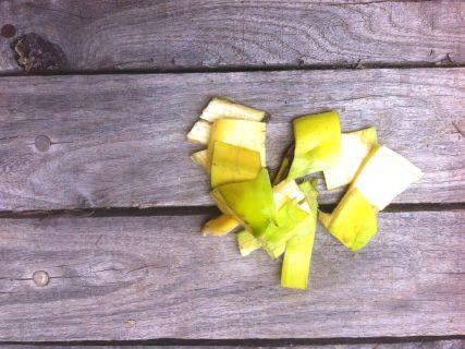 Bananenschillen zijn rijk aan kalium en fosfor en daarom uiterst geschikt voor je planten en dit niet alleen onder de vorm van compost maarook om ze te doen blinken en tegen bladluizen! Alsnatuurlijke meststof voor je planten Vul een emmer met water envoeg daar een aantal schillen aan toe. Laat het water met de schillen … Continued