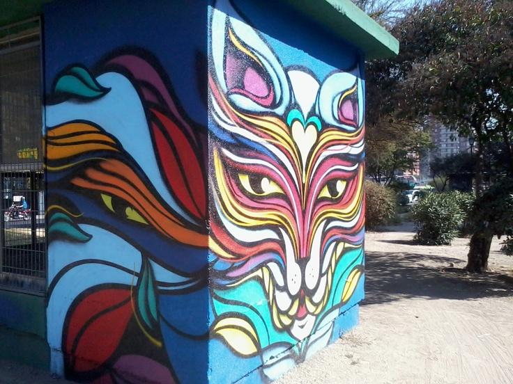 Cat`s Graffiti