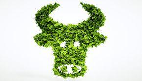 Nicht nur tierische Produkte liefern gutes Eiweiß http://www.menshealth.de/special/pflanzliches-eiweiss-auf-dem-vormarsch.359458.html