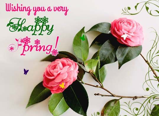 Wish your loved ones a happy, blooming #spring with thie beautiful #flower #ecard. #HappySpring. www.123greetings.com