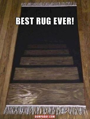 Optical illusion rug. I need one of these!                                                                                                                                                                                 More