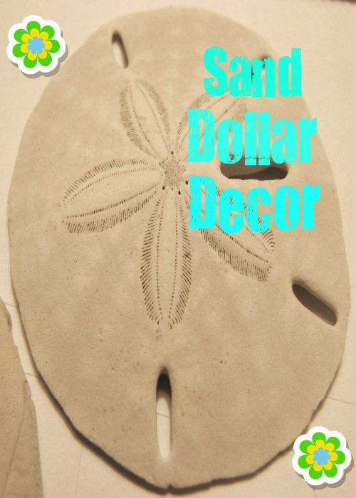 "Spread the loveThis sand dollar decor is the perfect addition to your coastal cottage or beach house. It adds a nautical touch to any home, and it's a creative way to add unique touches throughout your home. A sand dollar is a species of extremely flattened, burrowing sea urchins belonging to the order Clypeasteroida. Some … Continue reading ""Sand Dollar Decor"""