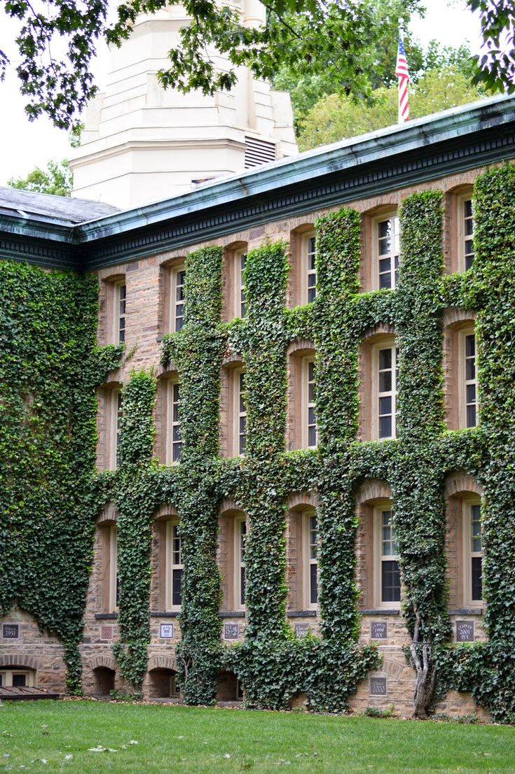 ivy league admission essays