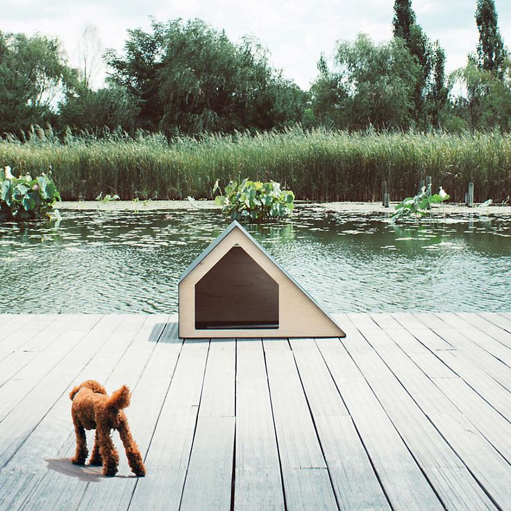 Deauville Small Pet House + Reviews | Crate and Barrel A Frame House, Pet Furniture, Animal House, Dog Accessories, All Dogs, Crate And Barrel, Clean House, Cute Puppies, Interior And Exterior