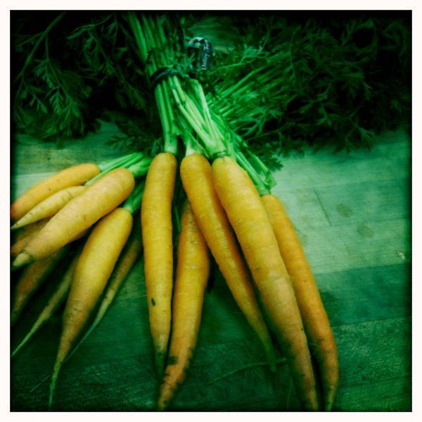 "Fantastic List of ""good"" foods for the Lyme diet"
