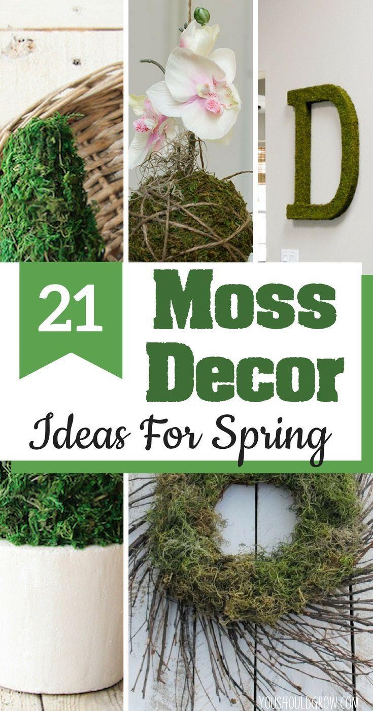 20 Diy Moss Decor Ideas For Spring Moss Decor Spring Decor Diy