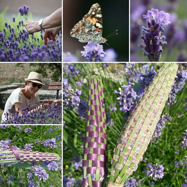 Simple Lavendelstab Dufts ckchen selber machen