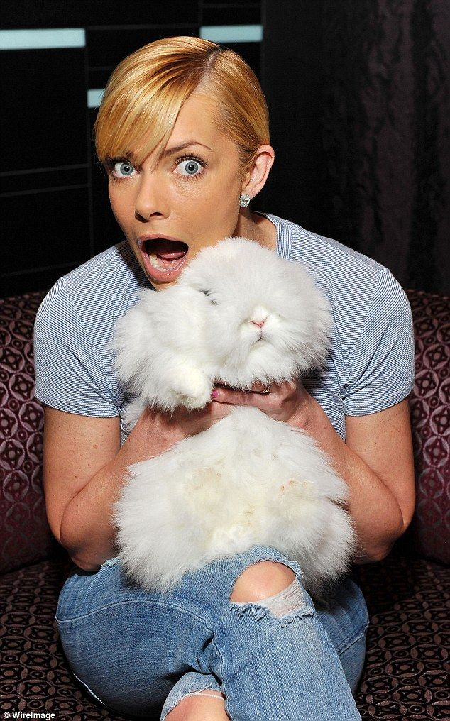 Jaime Pressly celebrates Easter early with her family by cuddling up with cute rabbits | Daily Mail Online