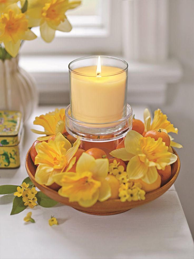 jarní Narcis