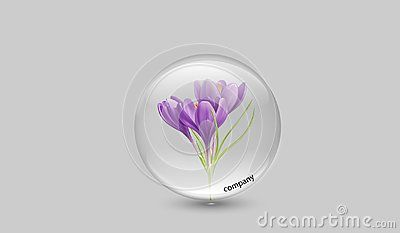 Crystal clear freesia translucid company logo