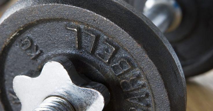 Exercícios com pesos livres para idosos. Pesquisas mostraram que o treinamento com pesos aumenta a densidade dos ossos e protege os idosos contra a osteoporose. Levantar peso ajudará também na queima de gordura, na tonificação dos músculos e no aumento dos níveis de estamina, de forma que os exercícios aeróbicos sozinhos não conseguem fazer. Esse treino de força pode ser feito em casa, ...