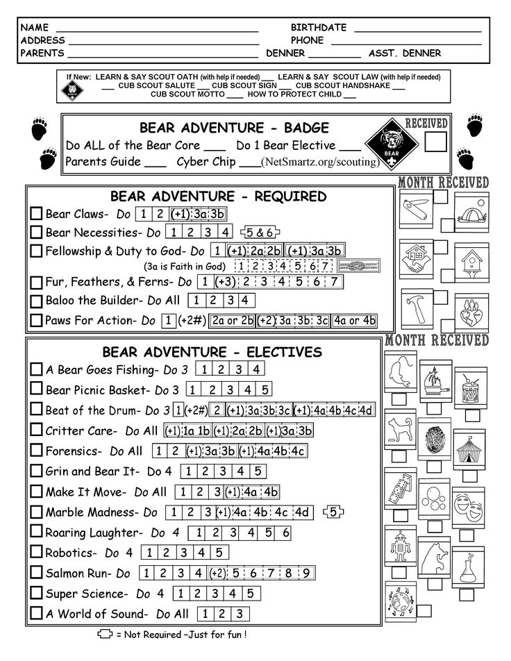 Cub Scout Bear Tracking Sheet Record with the New Modified Requirements as of Dec. 2016