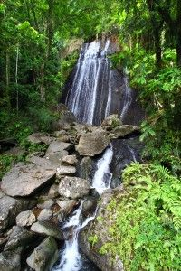 So Many Things to Do in Rio Grande, Puerto Rico http://caribbeantrading.com/so-many-things-to-do-in-rio-grande-puerto-rico/
