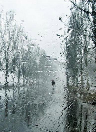 Rain   On the way home in the rain