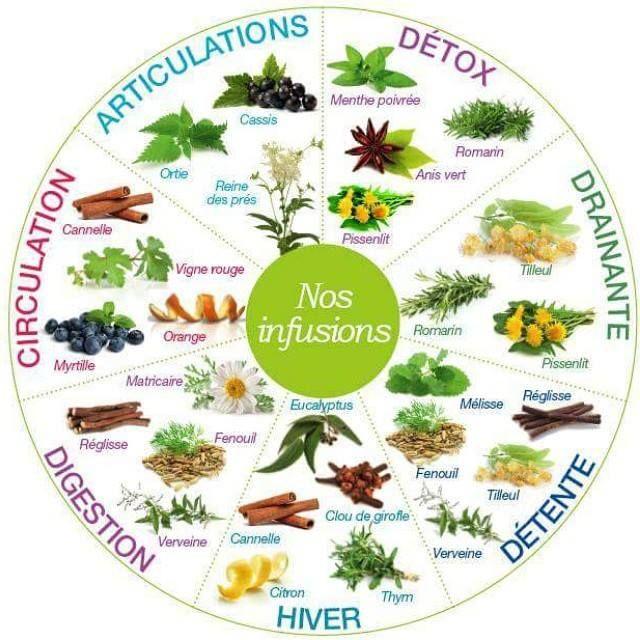 Bien faite, cette roue est à garder pour savoir quelle tisane prendre en fonction des saisons et des symptômes. Sur le même thème