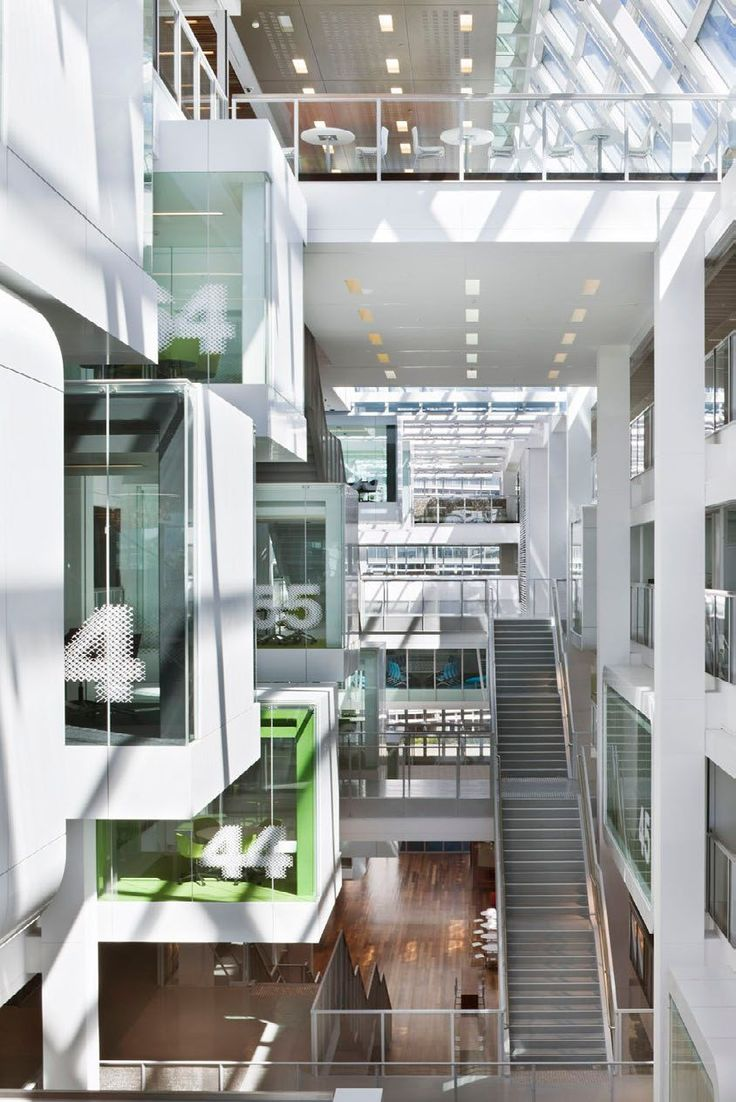 One Shelley Street Office Interior by Clive Wilkinson Architects