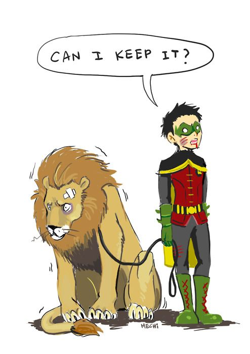 awww Damian, sure ( techaly he was never on YJ.... But if they had a 3rd time skip he would be) >>> I love Damian and his love for animals