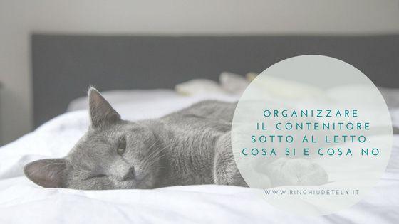Oggi in questo articolo vediamo come organizzare il contenitore del letto per risparmiare spazio e trovare sempre quello che cerchi.