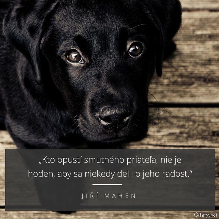 Kto opustí smutného priateľa, nie je hoden, aby sa niekedy delil o jeho radosť. - Jiří Mahen