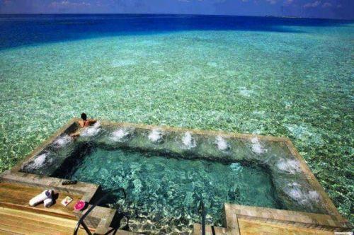 wow: Swim Pools, Resorts, The Ocean, Islands, Hot Tubs, The Maldives, Heavens, Spa, Hotels