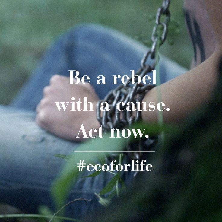 Be an #ecowarrior for L.I.F.E. #ecoforlife