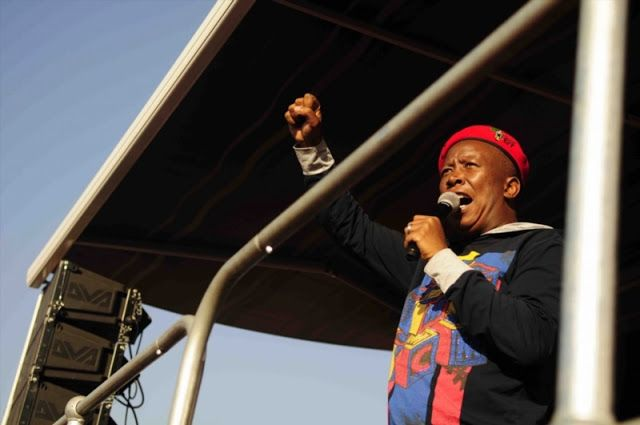 Julius Malema tells Zimbabweans Malema - we're on the side of Zimbabwe's masses
