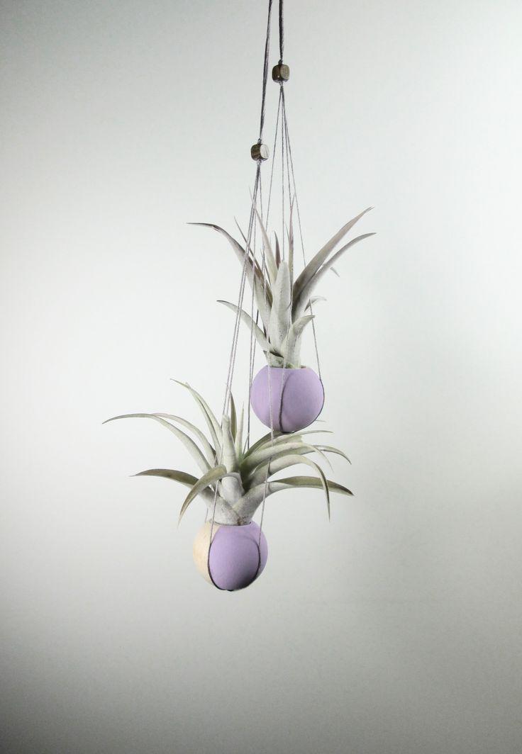 Two handmade air plant holders with one Tillandsia capitata Peach and one Tillandsia brachycaulos multiflora in them. #handmade #DIY #airplants